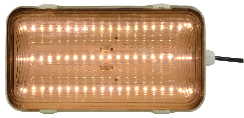 IP65 bulkhead LED light 16W 4200K clear cover