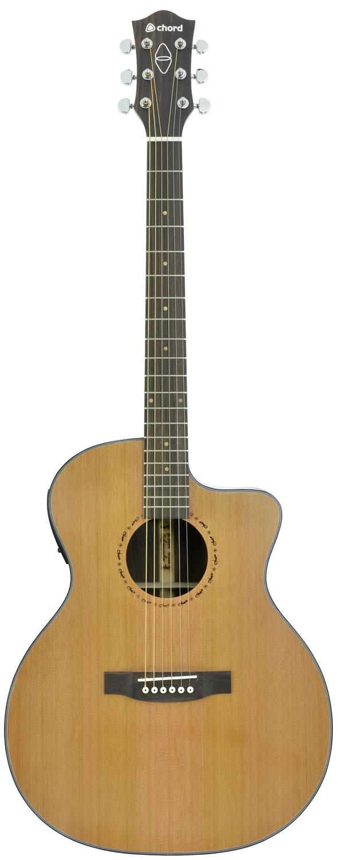 Salamander jumbo electro-acoustic guitar