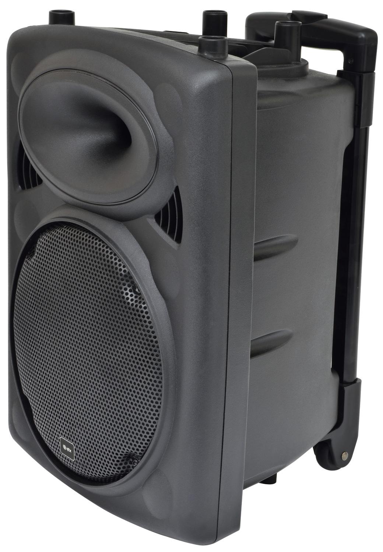 "QR10"" Speaker Portable PA + 2 mics + Trolley"