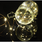 100 LED Copper Wire String Lights Warm White by lyyt, Part Number 155.626UK